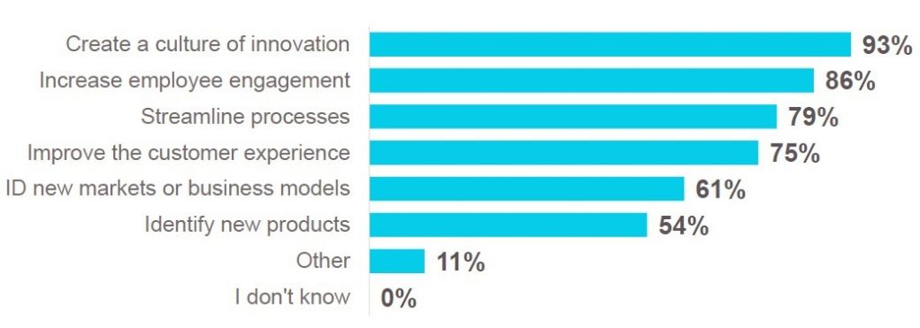 Most Important Innovation Objectives